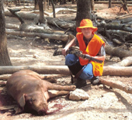 Razorback Hog Hunt at High Adventure Ranch