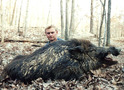 Trophy Russian Boar